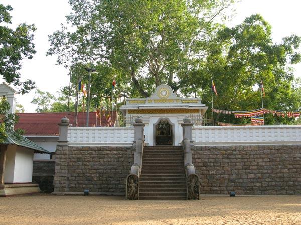 Sri Maha Bodhi - a major Buddhist religious site in Anuradhapura